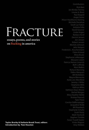 web-page-fracture-cover